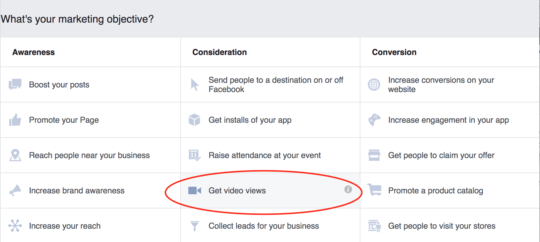 Facebook video views objective