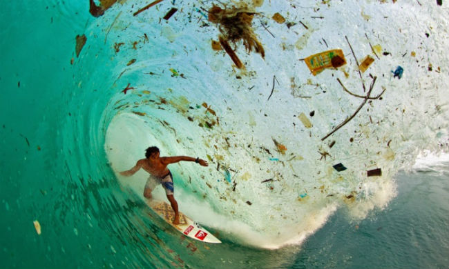 surfer-zak-noyle