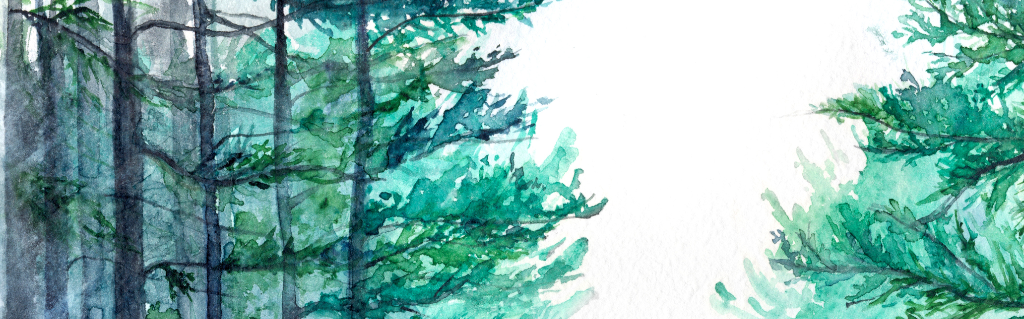 Watercolour of pine trees